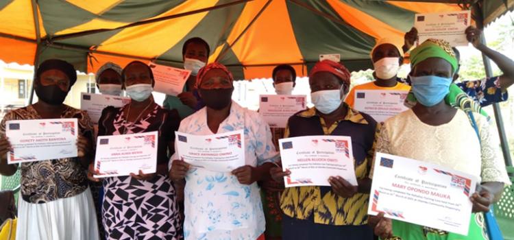 Strengthening community palliative care